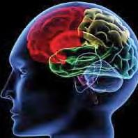 Alzheimer's Affects Women More Quickly