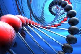 Cancer biomarker