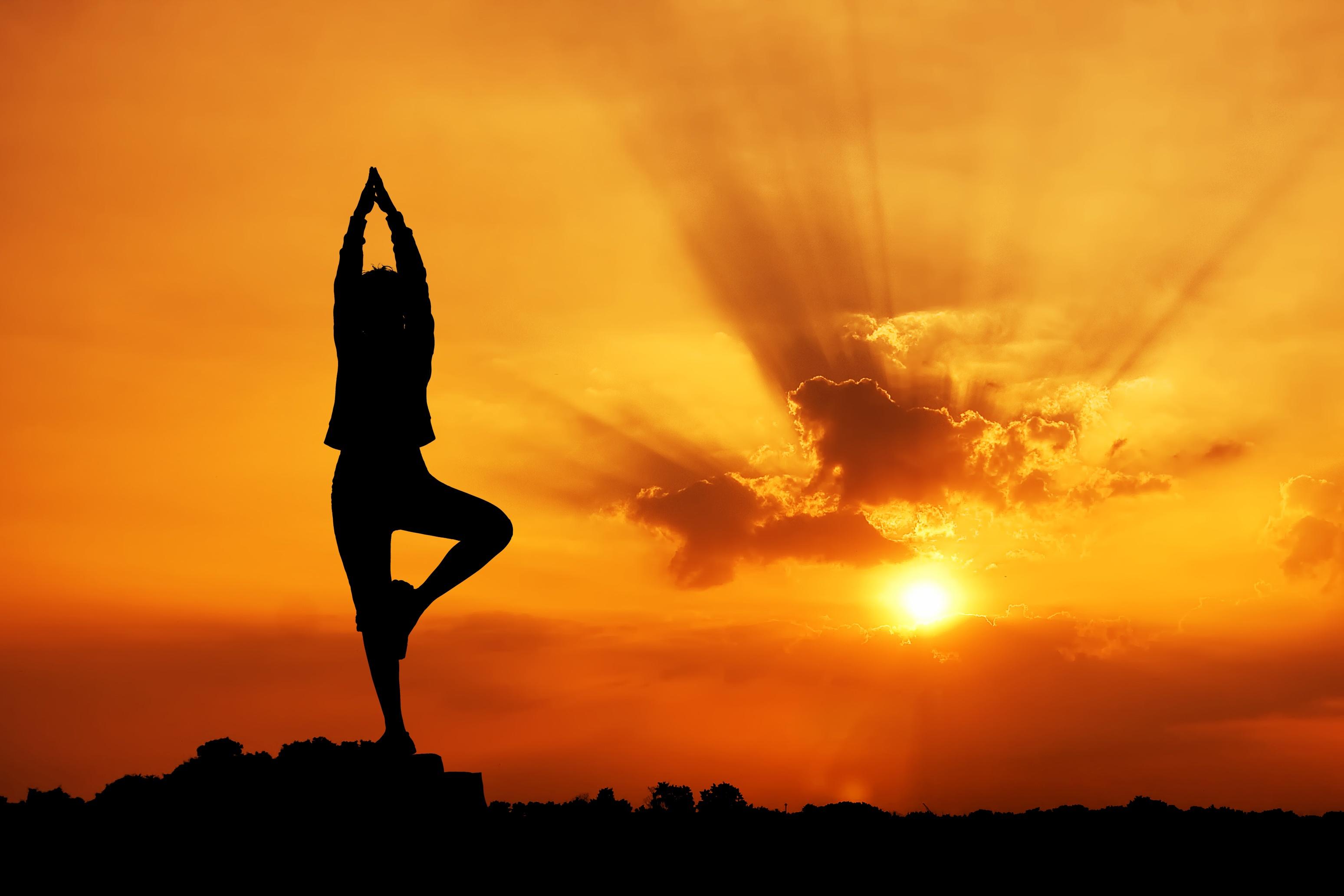 yoga, AYUSH