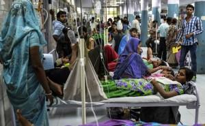 dengue_patients