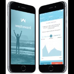 wayforward-modules