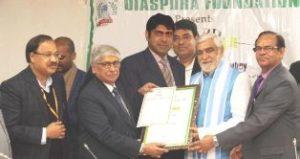 Indian Diaspora Foundation