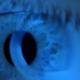 Eyes-new
