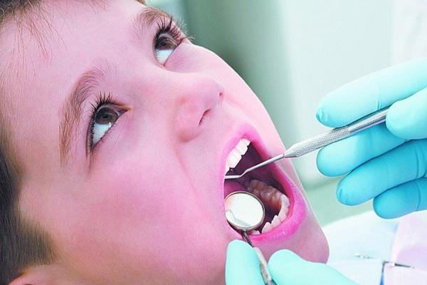 526 teeth