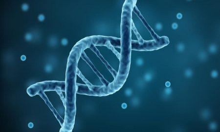 Reproductive Genetic Testing