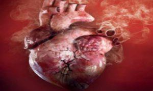 tobacco-heart