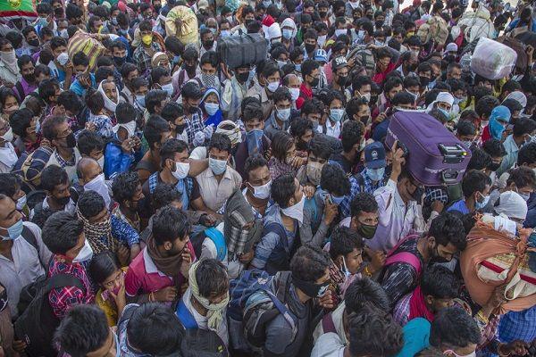 crowd covid (1)